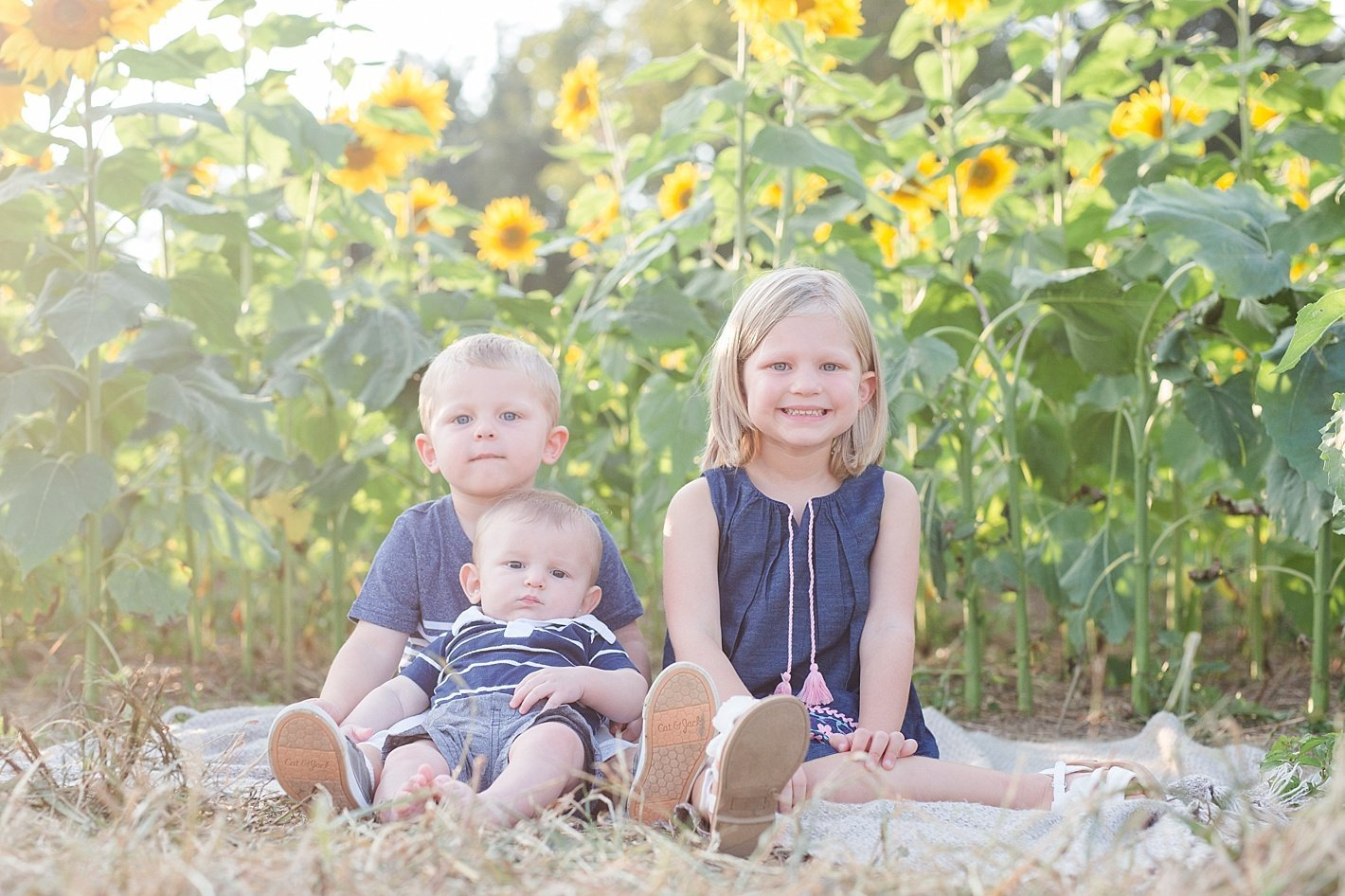 sunflowerfieldpicturesclearmeadowfarmportraitssunflowerfieldfamilyphotos-12