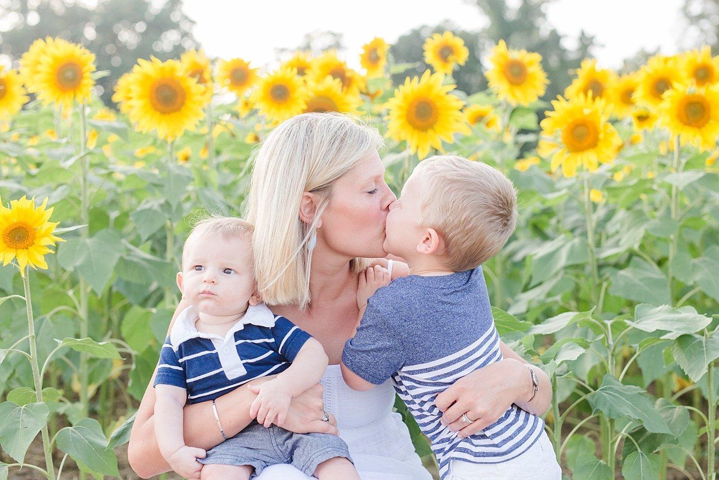sunflowerfieldpicturesclearmeadowfarmportraitssunflowerfieldfamilyphotos-3