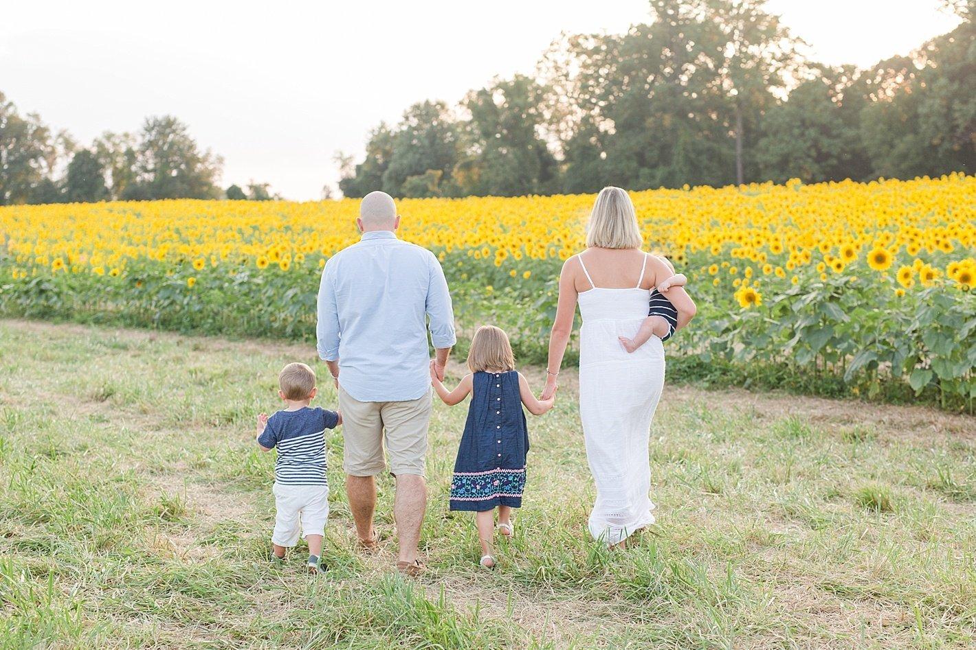 sunflowerfieldpicturesclearmeadowfarmportraitssunflowerfieldfamilyphotos-42