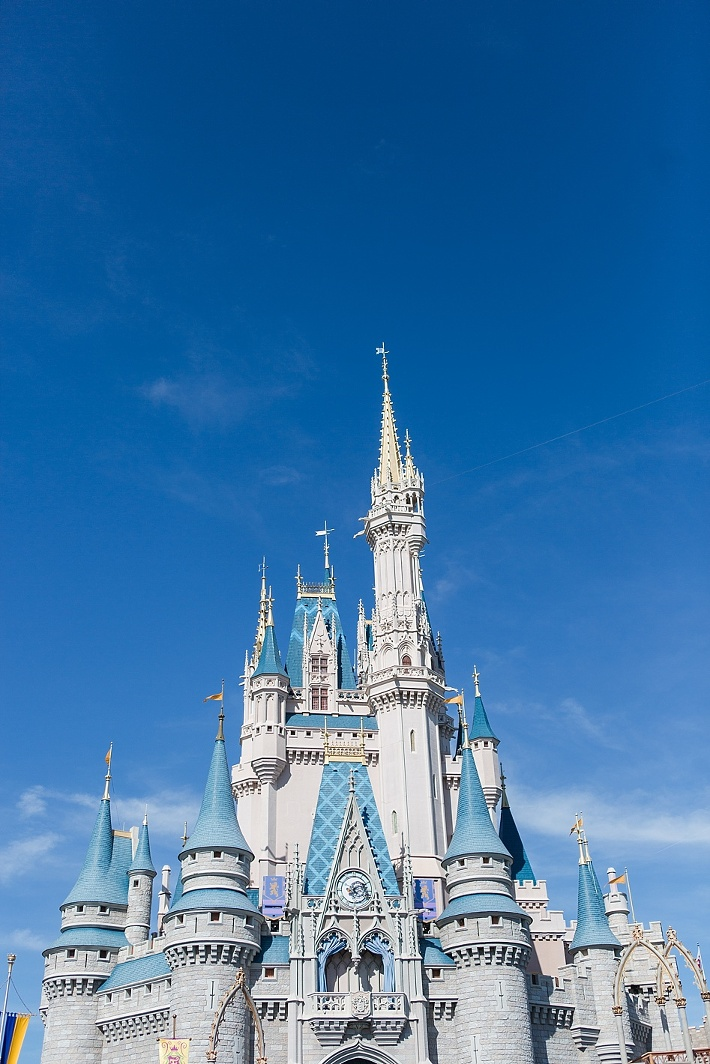 Disney world Cinderella