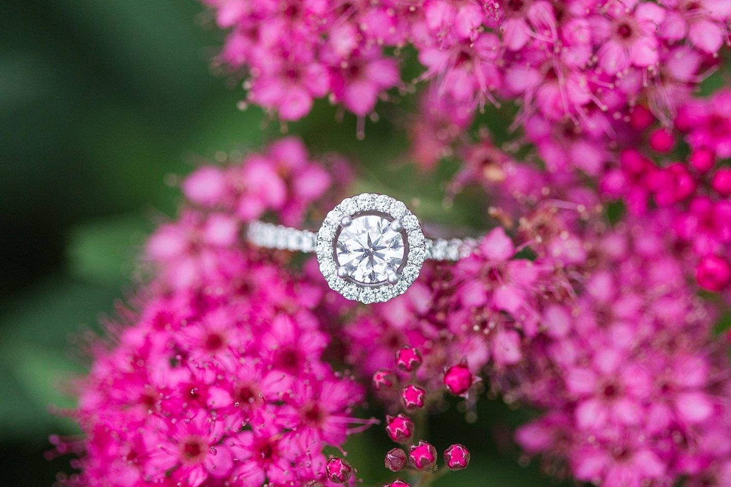engagement ring, halo engagement ring, diamond engagement ring