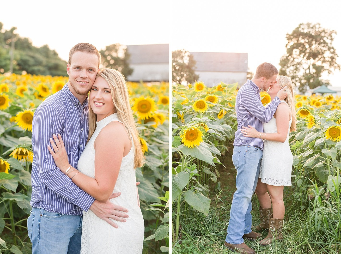 Sunflower Field engagement, Baltimore county sunflower field, pictures in sunflower fields, romantic engagement photography
