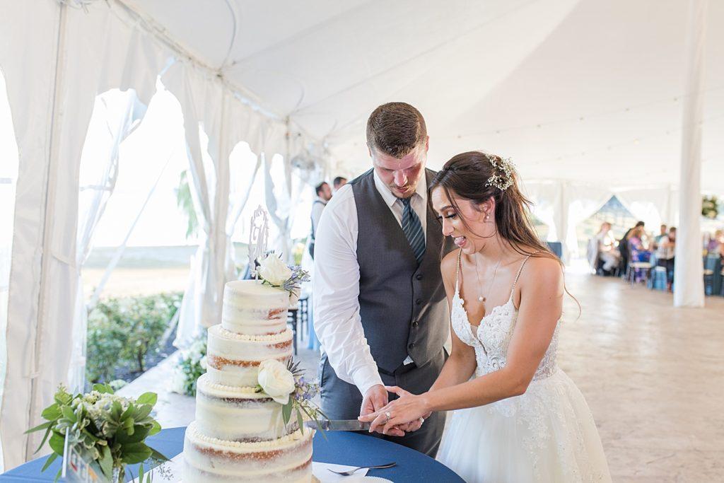 Cake Cutting at Bohemia Overlook Wedding Reception